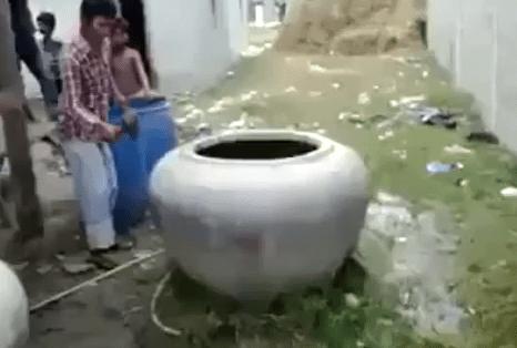 壺に閉じ込められた牛の救助
