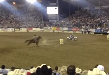馬 vs. モトクロスバイク