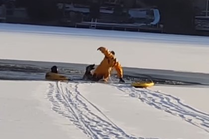 凍った湖に落ちたワンコを噛みつかれながらも救出