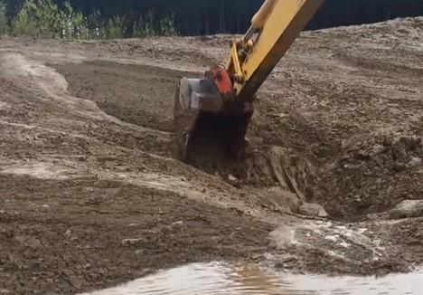泥に飲み込まれた鹿をパワーショベルで救出