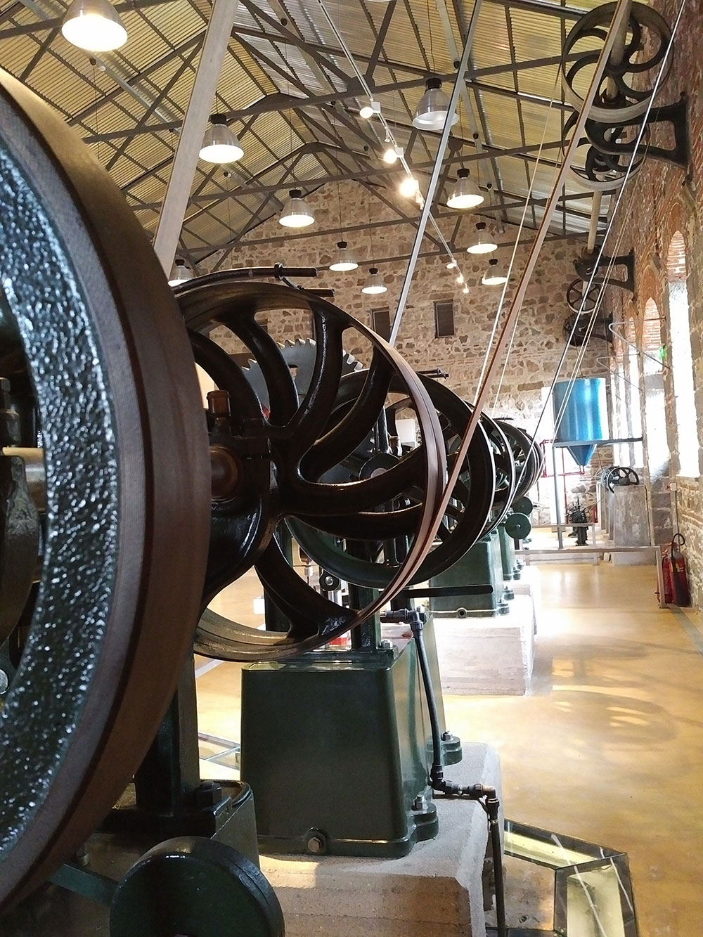 At the community olive oil mill — these steam-powered machines turn cogs to move belts and pulleys and provide power to the olive presses