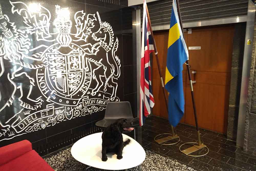 We collected Poppy from the British Embassy in Stockholm, where quite a few staff were on hand to give her a proper send-off. Needless to say, Poppy adored all the attention!