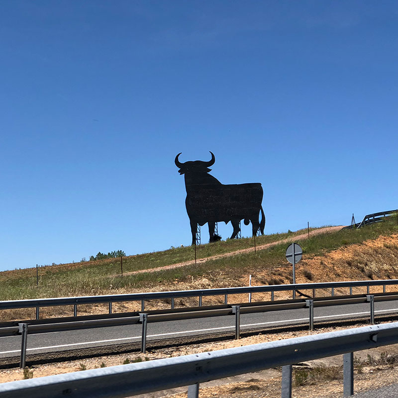 A typical symbol of Spain, stunning against the bluest of blue skies
