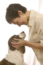 About Dog Training in Indianapolis
