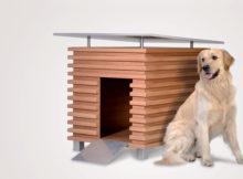 Cucce Per Cani Archivi Animali Pucciosi