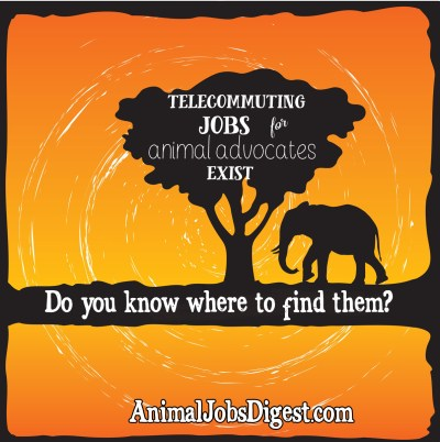 Elephant Telecommuting