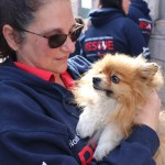 Pomeranians Rescued From Horrific Conditions In Georgia Rescue Animal League