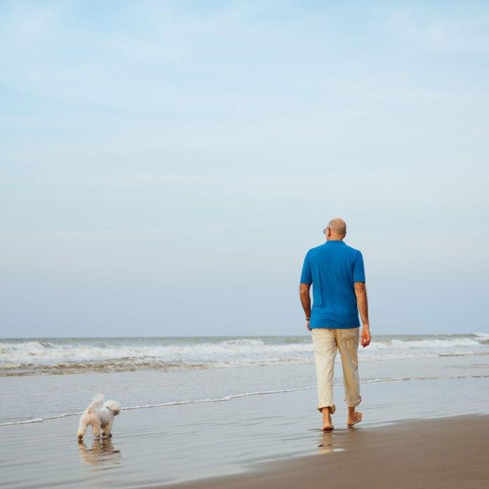 camminare con il cane senza guinzaglio