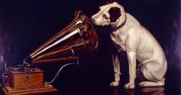 Αποτέλεσμα εικόνας για Οι σκύλοι ακούνε... μουσική