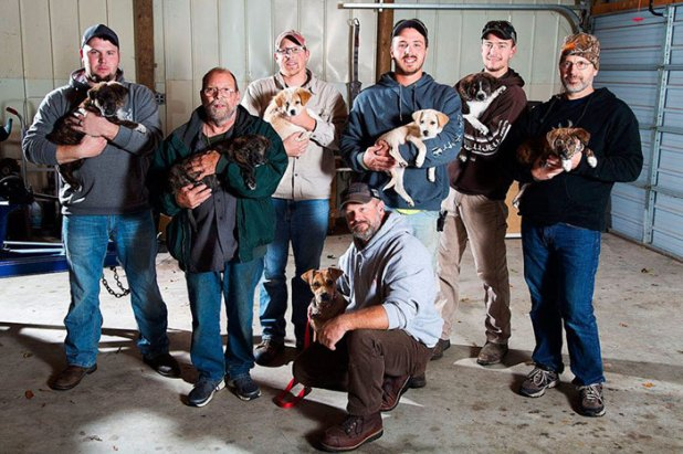 Αδέσποτη σκυλίτσα οδηγεί τους θαμώνες ενός μπάτσελορ πάρτυ στα νεογέννητα κουτάβια της και αυτοί τα υιοθετούν όλα αδέσποτη σκυλίτσα