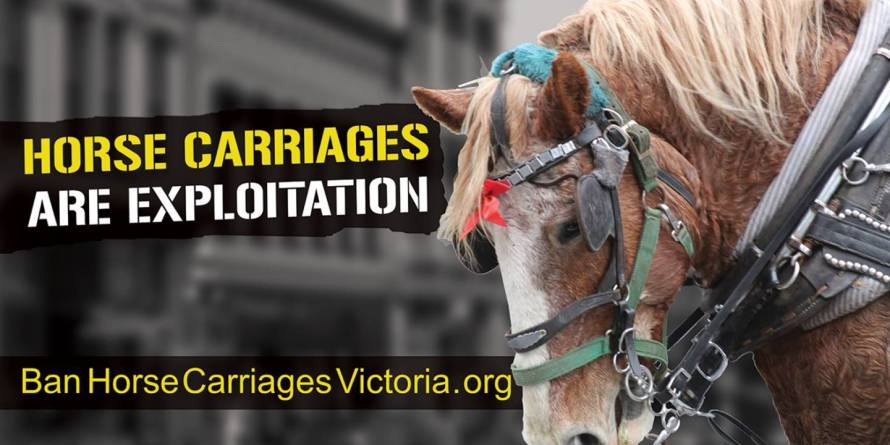 billboard_ban_horse_carriages_victoria