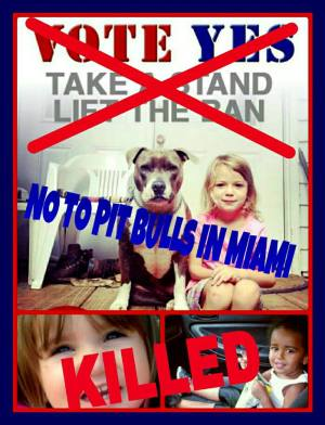 Miami pit bull victims Nyjah Espinosa, lower left, and Javon Dade Jr., lower right. (Beth Clifton collage)
