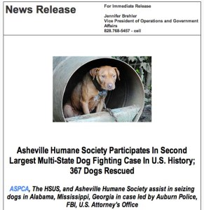 2013 dogfighting case
