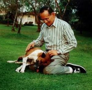 Thai King Bhumibol Aduladej and Tong Daeng.