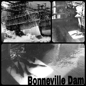 Bonneville Dam under construction; original fish ladder gate; original fish ladder.