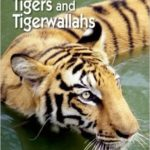 Tigers and Tigerwallahs