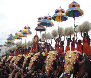 Elephants participating in the Thrissur Puram religious pageant,  a particular concern of V.R. Krishna Iyer.  (Wikipedia)