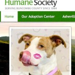 Buncombe County,  NC orders moratorium on pit bull adoptions