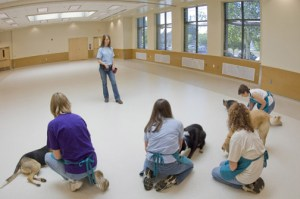 Oregon Humane Society dog training center floor still looks new. (OHS photo)