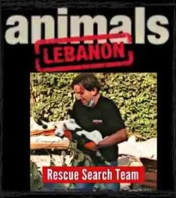 Animals Lebanon