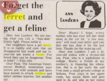 Ann Landers on ferrets, 1986