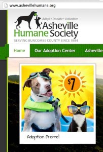 Another Asheville Humane Society pit bull promotion.