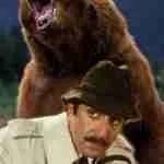 Dead-end WSU studies kill bears & bighorn sheep