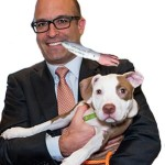 Did ASPCA discover certifying SAFER dog screening might be dangerous?