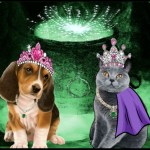 Best Friends Animal Society dog and cat in capes