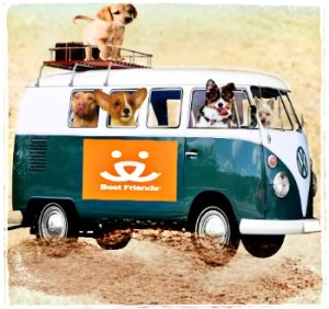 Best Friends Animal Society van and dogs