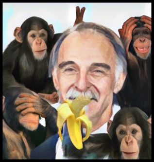 Bruce Wagman and chimpanzees