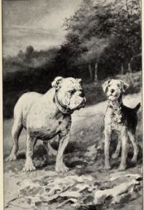 Illustration by William Van Dresser.