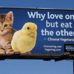 World's largest mayonnaise maker to seek end to culling male chicks