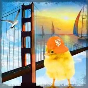 Chicks left in San Francisco