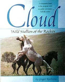 Cloud, WIld Stallion of the Rockies