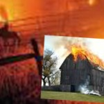 Agribusiness plays the bull fiddle while animals burn