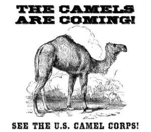 (National Park Service image)