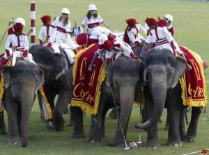 Female visitors to Jaipur play elephant polo. (www.VisitRajasthan.com)