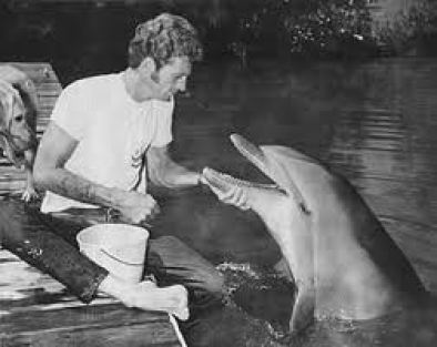 """Ric O'Barry in his """"Flipper"""" days."""