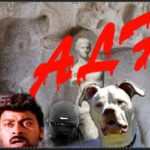 "What Gau Rakshas,  the ALF,   & ""pit bullies"" have in common"