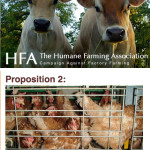 Costco, General Mills, Prop 2, and HSUS:  New Day – Same Problem