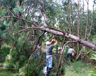 Big Cat Rescue personnel clean up after Hurricane Ivan in 2004. (Big Cat Rescue photo)