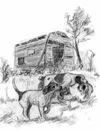 Illustrationbookpage