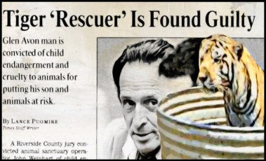 John Weinhart in court with tiger in a tub