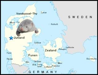 Jutland, Denmark map