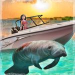 COVID-19: speedboat toll on manatees soars, but large land mammals get a break