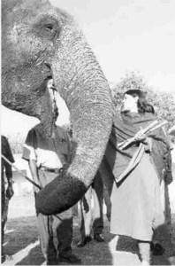 Maneka Gandhi & captive elephant Loki in 1998.