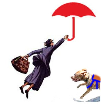 Pit bull attacks Mary Poppins
