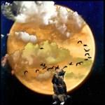 Migratory birds in moonlight with cat