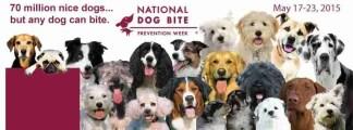AVMA Dog Bite Prevention Week 2015 banner